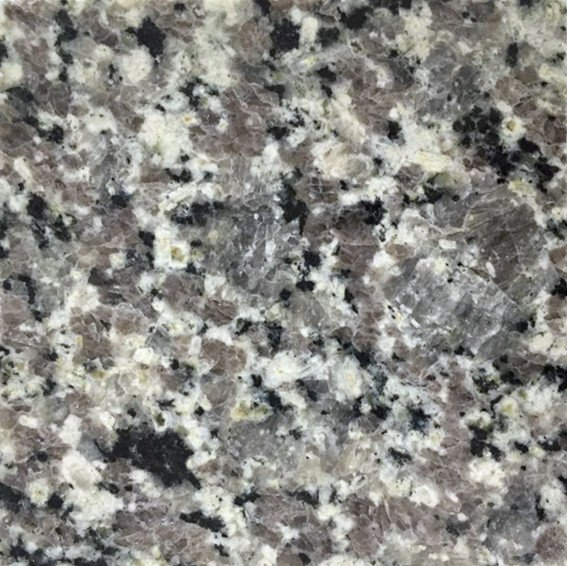 G701 Galaxy Grey Granite Sample