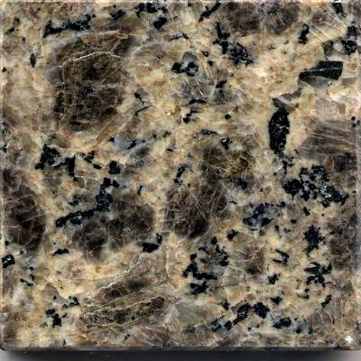 GX004 Leopard Skin Granite Sample
